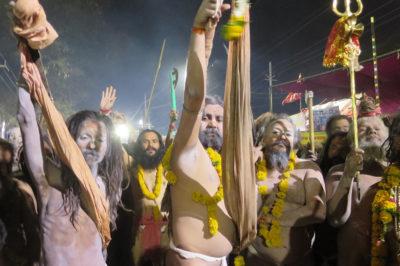 sanatan dharma celebration